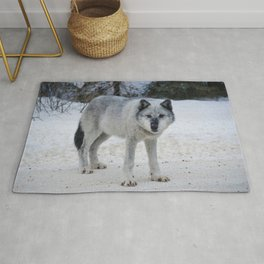 Lone wolf of the Canadian Rocky Mountains Rug