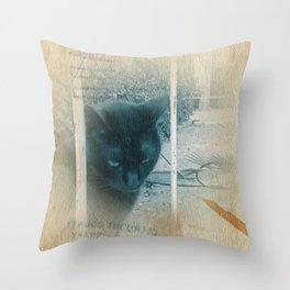 Street Cat V Throw Pillow