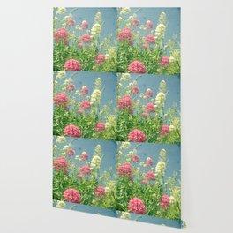 Raspberries and Cream Wallpaper