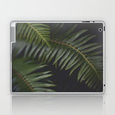Woodland Ferns Laptop & iPad Skin
