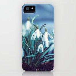 Spring 2019 iPhone Case