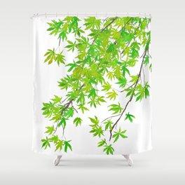 fresh green spring maple leaf Shower Curtain