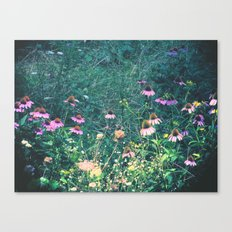 Flowers of the Field Canvas Print
