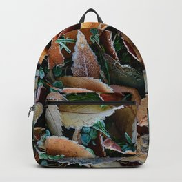 frosty mornings Backpack