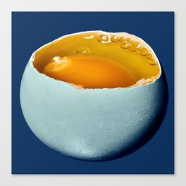 Egg Moon Canvas Print