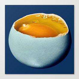 Egg Moon Canvas Print
