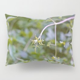 Growth and Transformation Pillow Sham