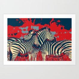 American Zebra Art Print