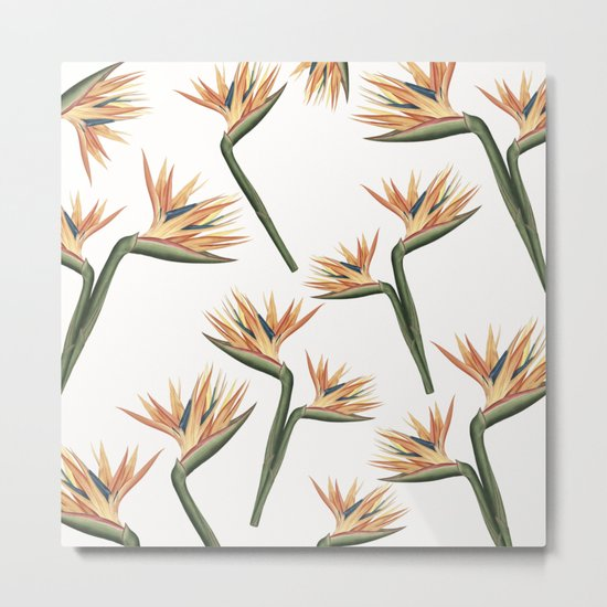 Birds of Paradise Flowers 2 Metal Print