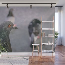 Puerto Rican Pigeon Wall Mural