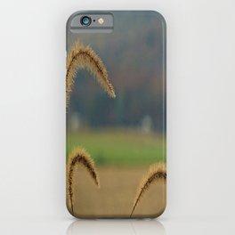 Grass Seed Stalks iPhone Case