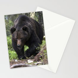 King of forest, male brown bear approaching Stationery Cards