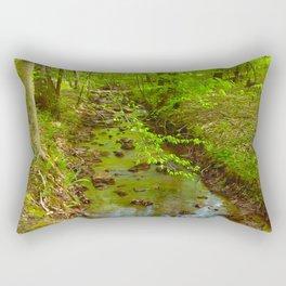 Park Stream Rectangular Pillow