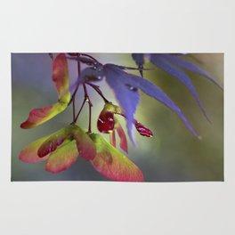 Japanese Maple Seeds Rug