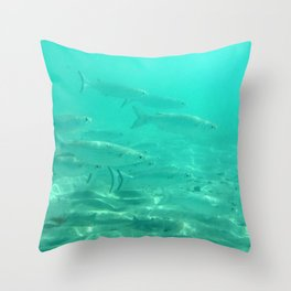 Watercolor Fish, Striped Mullet 01, St John, USVI Throw Pillow