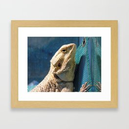 Lemmy the bearded dragon. Framed Art Print