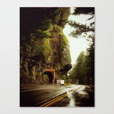 Ingress Canvas Print