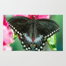Easter Tiger Swallowtail Butterfly Rug