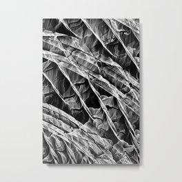 Dextro.org_G030 Metal Print