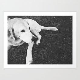 Dog Years Art Print