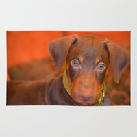 doberman Area & Throw Rugs featuring Misha the doberman by lennyfdzz