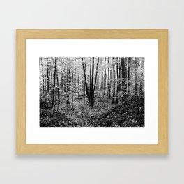 Black and White Forest Leaves Framed Art Print