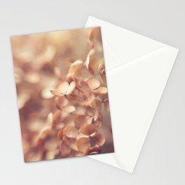 Soft Peach Stationery Cards