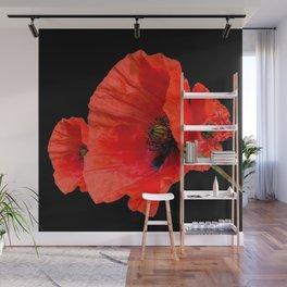 Poppies on Black Wall Mural