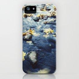 Autumn Leaves, Color Film Photo, Analog iPhone Case