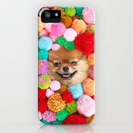 Pomeranian in the Poms iPhone Case
