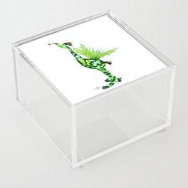 Fantasy Bird Gobi Acrylic Box