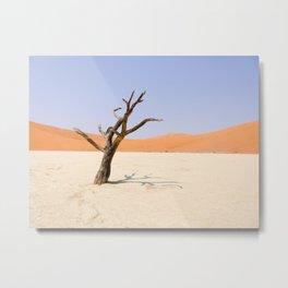 Lone Tree Deadvlei Namibia Metal Print