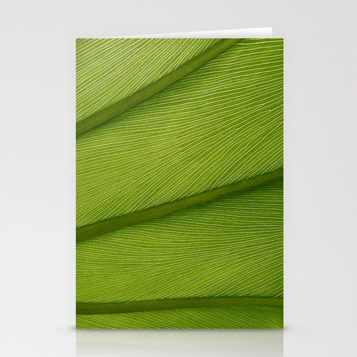Green Leaf Texture 05 Stationery Cards