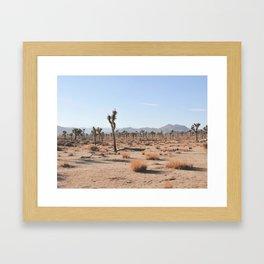 JOSHUA-SCAPE Framed Art Print