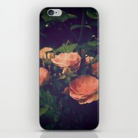 antique iPhone & iPod Skins featuring Antique Rose by A Wandering Soul