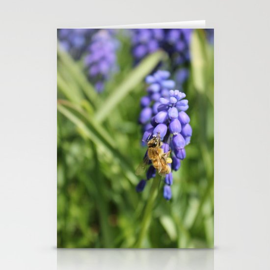 Sweet Hyacinth Stationery Cards