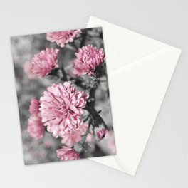 Blushing Gray Stationery Cards