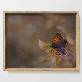 Small Copper butterfly Serving Tray