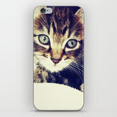 Raja iPhone & iPod Skin