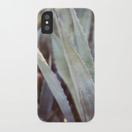Winter Agave #3 iPhone Case