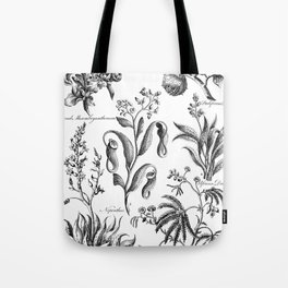 Antique Nepenthes and Drosera Print from 1757 Tote Bag