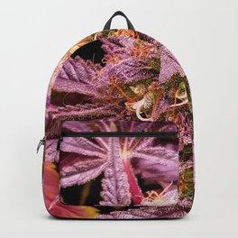 Ultraviolet Backpack