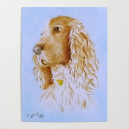 Best Bud Cocker Spaniel Poster