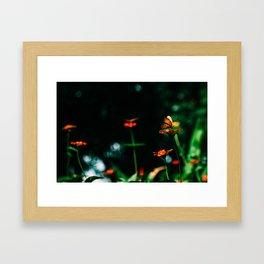 Butterfly Land Framed Art Print
