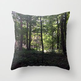 Rushemere Country Park, Bedfordshire UK Throw Pillow