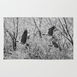 Canada Geese in Black & White Rug