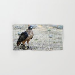 Red Tailed Hawk Catch Hand & Bath Towel