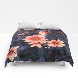 Dahlias' Sunset in August Comforters