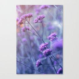 in purple mood Canvas Print