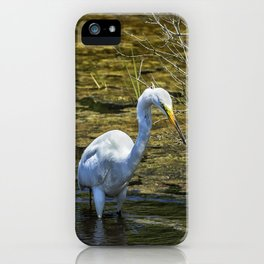 Great Egret Foraging in a Stream iPhone Case